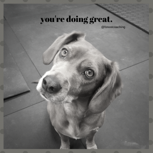 Cute dog in greyscale